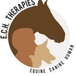 tony ech therapies