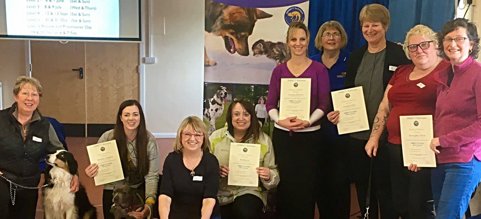 Introductory Course For Dogs