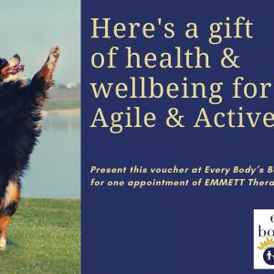 Agile & Active Dog